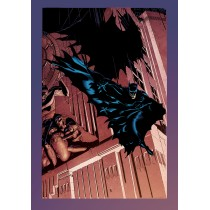 AFRAID OF EVERYTHING HC GN
